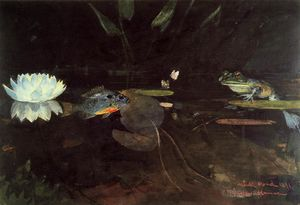 Winslow Homer - Nerz see