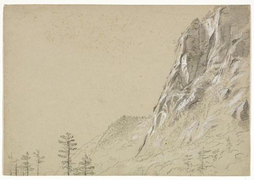 Hoch Rugged Cliff und Baum, illustration von Thomas Cole (1801-1848, United Kingdom)