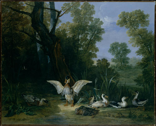 Ducks Ruhen in Sunshine von Jean-Baptiste Oudry (1686-1755, France)