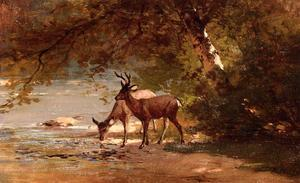 Thomas Hill - Deer in einer Landschaft