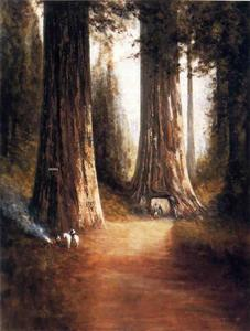 Thomas Hill - Sequoia Gigantea