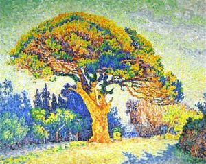 Paul Signac - die kiefer in st. . Trope..