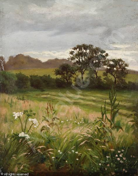sommerlandschaft von Frederick William Jackson (1843-1942, United States)