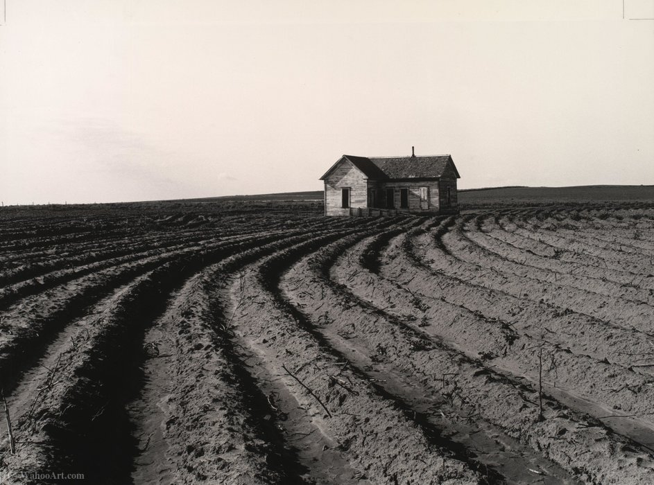 Tractored heraus, Childress County, Texas von Dorothea Lange (1895-1965, United States)